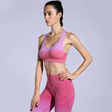 Color mixing absorber adjustment bra