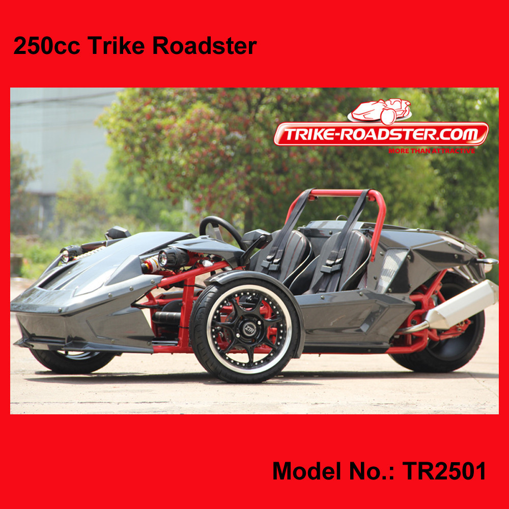 amphibious vehicles for sale /EEC 250cc Trike/Reverse Trike