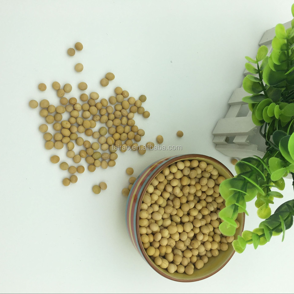 2016 new crop top quality cultivated soybean