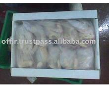 High Quality Naked Hens in 10 kg carton