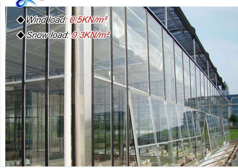 Factory Price Galvanized steel frame agricultural plastic green house