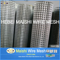 Electro Galvanized Welded Wire Mesh for Fence