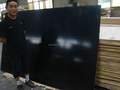 xuzhou marine plywood film faced plywood indonesia with customer's logo