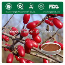 Asiatic Cornelian Cherry Fruit Extract