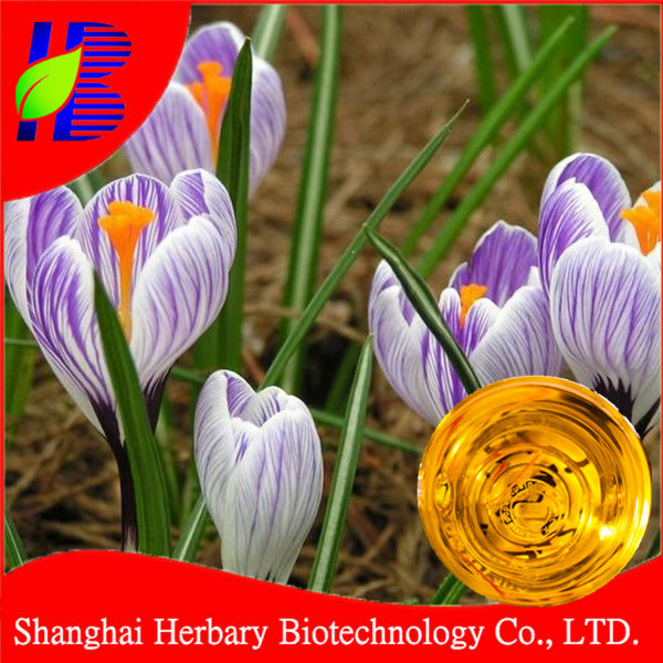 2017 Professional pure essential oil supplier sale Saffron Oil