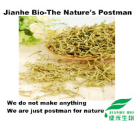 Reasonable price white powder Chlorogenic acid 98% Eucommia ulmoides P.E/Eucommia bark extract