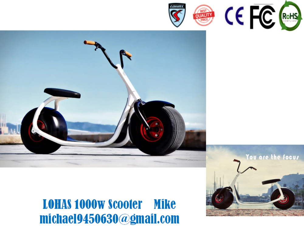 1000w 60v Harley 2 wheels electric scooter/3 wheel electric tricycle lithium battery 1000w 60v KCHS001