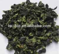 100%pure natural Instant Oolong tea extract powder 25% polyphenols
