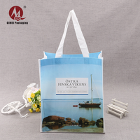 Hot sale ecological recyclable promotional pp non-woven shopping bag with cheapest price