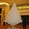 /product-detail/5-meter-plastic-unique-artificial-pine-needles-christmas-tree-decoration-for-shop-60674488183.html
