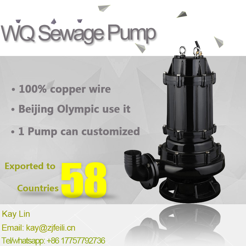 Feili Cast Iron WQ Sewage Centrifugal Submersible Pump for Dirty Water Watste Water