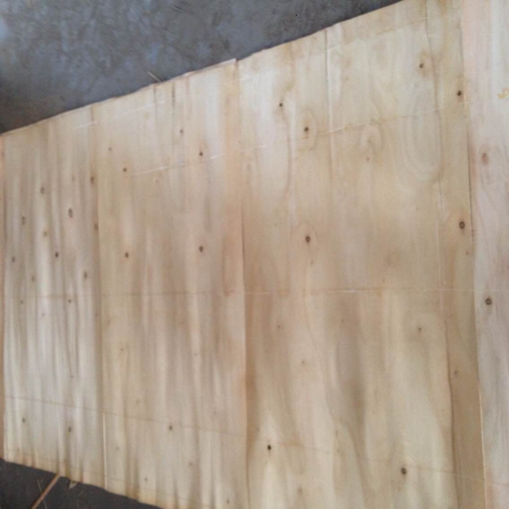 Eucalyptus Core Veneer &Wood Chips
