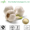 /product-detail/100-nature-deodorized-garlic-extraction-allicin-alliin-1744029562.html