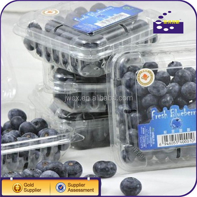 Disposable plastic blueberry packaging container