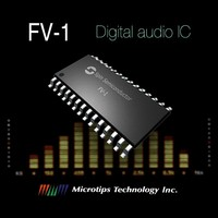 DSP Systems for Sound Processing SPIN series FV-1 IC