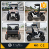 2 Seats 600CC 4 x4 Sport Utility Vehicle