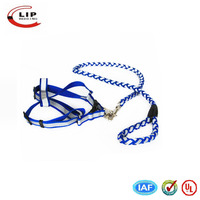 Fashion design wholesale best led dog collar and leash