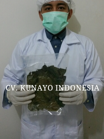 Dried Guanabana Leaves with Vacuum Packaging