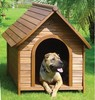 Eco-friendly Luxurious Outdoor Durable PS Dog House