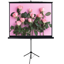 Tripod projection screen from factory directly
