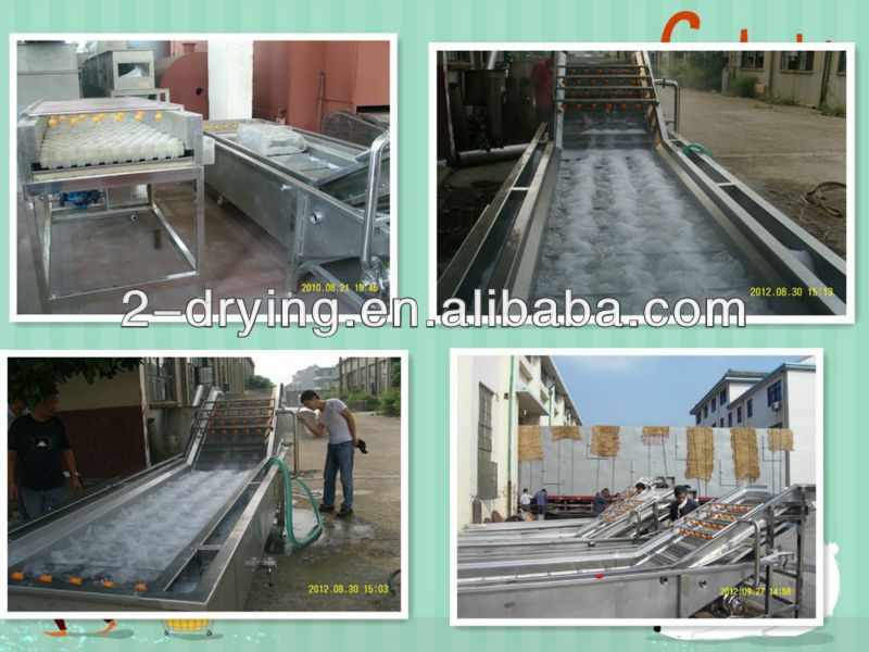 vegetable washing machine industry
