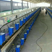 2017 hot sale easy clean hot dip galvanized rabbit cages in sale