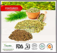 Top quality Natural Fennel seed extract, Common fennel extract powder, Foeniculum vulgare P.E. 4:1 10:1 20:1