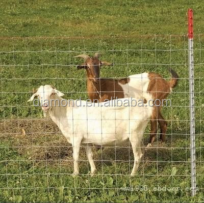 2015 new wire mesh field fencing/Wholesale Hot Dipped Galvanized Steel Woven Deer Field fence/animal field fencing