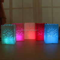 Colored luminary candle bags