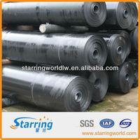 HDPE Waterproof Geomembrane Liner with High Quality