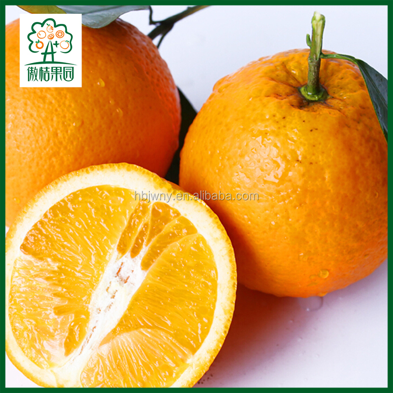 FRESH FRUIT CITRUS ORANGE EXPORTERS