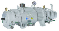 Dry Screw Vacuum Pump (Variable pitch)