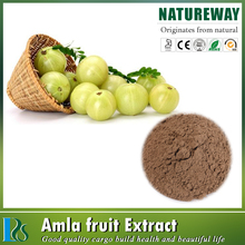100% natural ratio extract Alma extract powder
