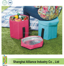 Foldable cooler bag seat