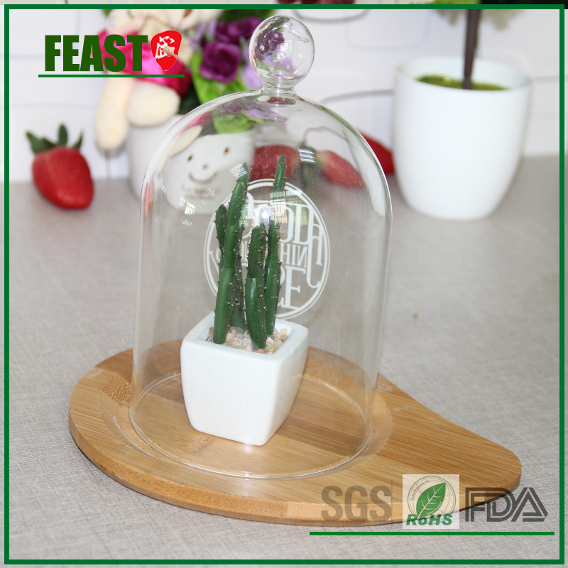FEAST hot sale clear glass bell jar with wooden base glass dome with bamboo base