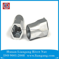 Fastener Small Head Inside & Outside Hexagon Rivet Nut Insert