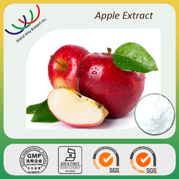 Phloridzin 80% / Apple Tree Bark Extract