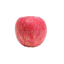 2017 Fresh Red Paper Bagged Fuji Apple From China