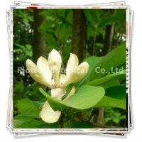 best quality magnolia bark extract