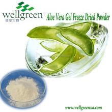 Organic Aloe Vera Powder 200:1 100:1 10:1/aloe vera gel freeze dried powder/aloe vera gel spray dried powder
