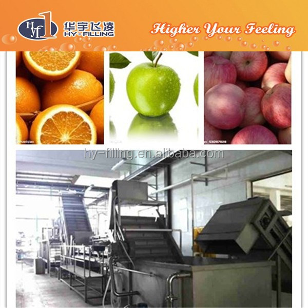 Fruit Sorting washing System