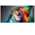 Wholesale Stretched Artistic Animal Picture Canvas Prints Lion and Nebula Photo Canvas Artwork Home Decoration