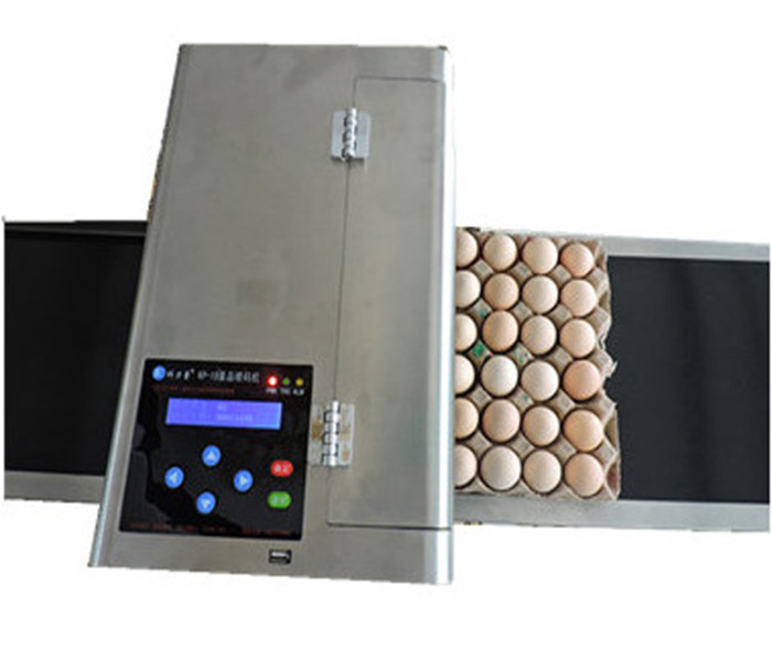 applicable to the whole pallet eggs kp-19 ink-jet printing machine