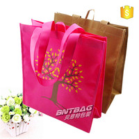 popular non woven shopping bag,shopping plastic bags,reusable shopping bags