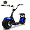 Best selling electric scooter 1000w citycoco scooter, harley motorcycle