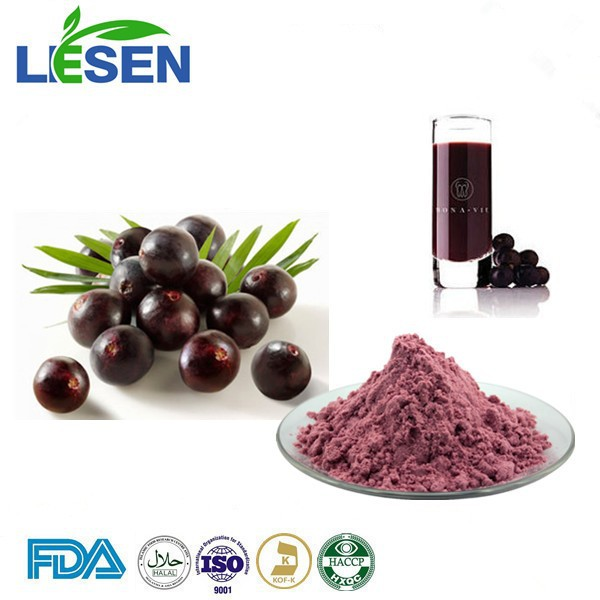 Plant Extracy 100% Water Soluble Acai berry Brazil Powder Acai berryBrazil Extract