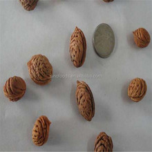 Shan Tao China Supplier Sweet Delicious Peach Seeds For Sale