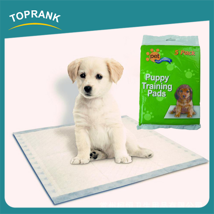 Familiar With ODM Factory Training Underpad Dog Training Pads Wholesale