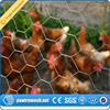 china supplier small hole hexagonal decorative chicken wire mesh from qunkun