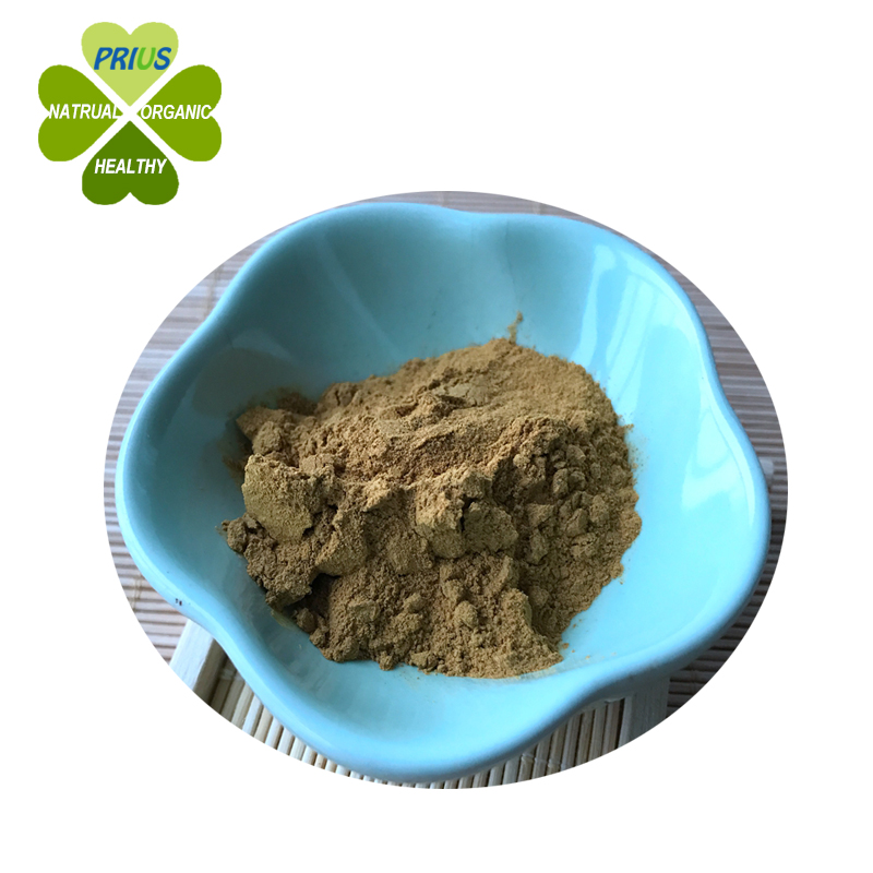 Natural Herbal extract Ginkgo Leaf Extract